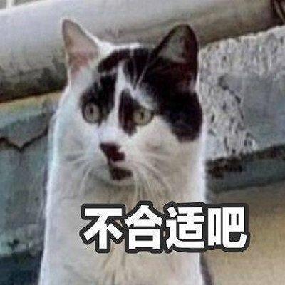 丑猫表情包